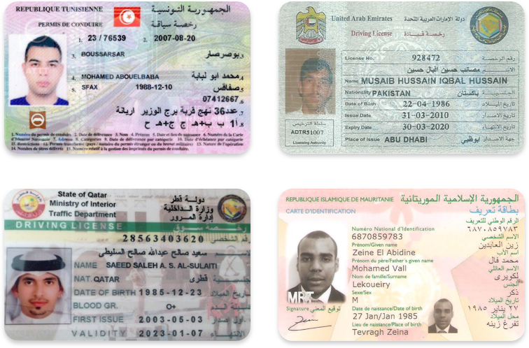 Driver's licenses in Arabic