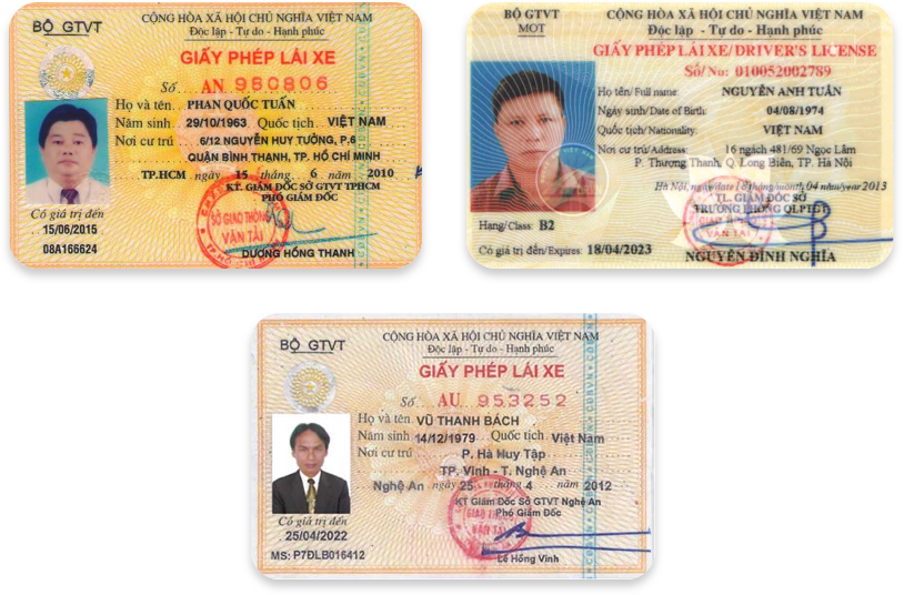 Driver's licenses in Vietnamese