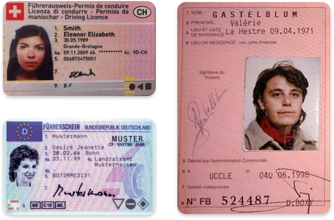 Driver's licenses in German