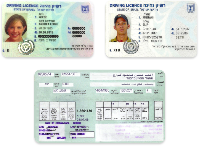 Driver's licenses in Hebrew