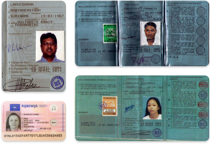 Driver's licenses in Dutch