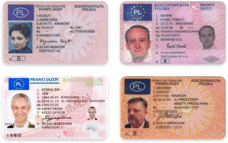 Driver's licenses in Polish