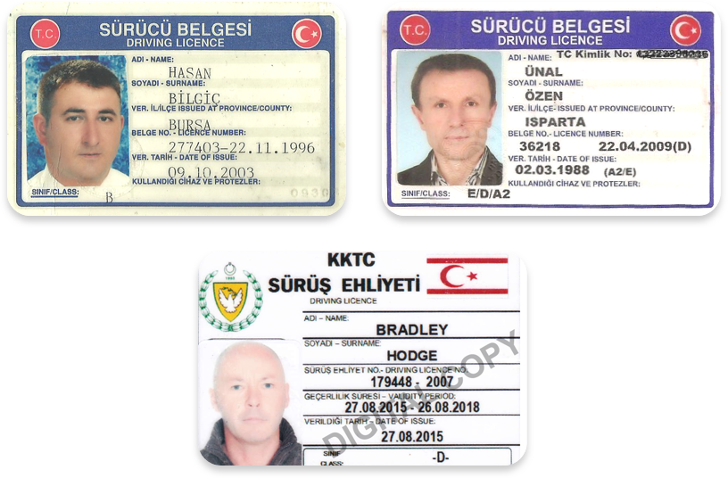 Driver's licenses in Turkish