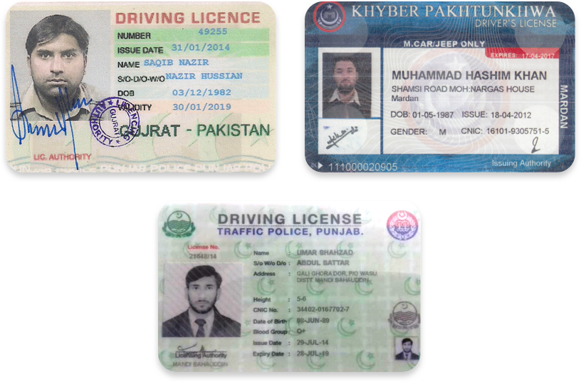 Driver's licenses in Urdu